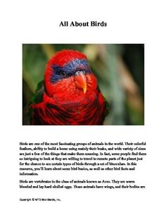 Matching Worksheet Pdf Moon Abc Order Printable Perimeter Area And Volume Worksheets Pdf with Personal Monthly Budget Worksheet Pdf This  Page Bird Worksheet Module Contains A Number Of Resources About  Birds Including Bird Activities Mole Worksheet 1
