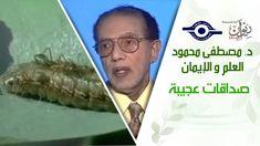 د. مصطفى محمود - العلم والإيمان - صداقات عجيبة Kids Tv