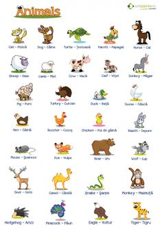 Animale in engleza - SuntParinte. English Writing Skills, English Lessons, Teaching English, English Vocabulary Words, Learn English Words, First Grade Worksheets, Teaching Writing, Infant Activities, Language
