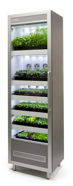 Evogro E3132 - A flexible configuration allowing you to grow a wide variety of microgreens, salad leaves and herbs.