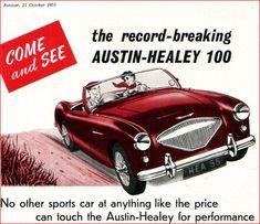 Austin Healey 1955