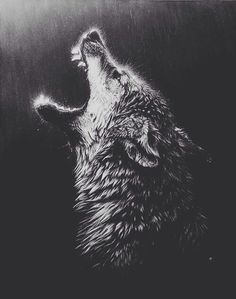 wolves got to be the most beautiful and mysterious creatures in the world #wolf #wolves #animals #depression #loneliness