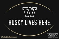 Washington Huskies - Husky Lives Here