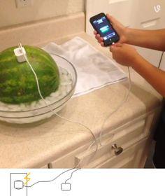 Aprenda a carregar a bateria do seu celular com uma melancia! Fake? | Tudo Mundo ~ tudomundo.com.br