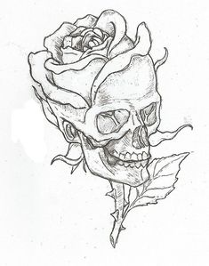 Simple skulls and roses drawings easy skull drawings, simple skull drawing, rose drawings, Cool Art Drawings, Pencil Art Drawings, Drawing Faces, Drawings Of Skulls, Drawing Pictures, Drawings About Love, Cool Simple Drawings, Simple Drawings For Beginners, Easy Sketches To Draw