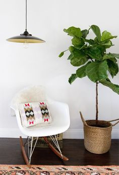 Easy DIY Pendant Lamp! (click through for the full tutorial) Ikea Hacks, Hacks Diy, Apartment Therapy, Apartment Living, Ikea Lighting, Basket Lighting, Entryway Lighting, Ficus Lyrata, Ikea Hack Bedroom
