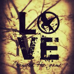 game fangirl, games, the hunger, the game, hunger game, favor, movi, chang, fire