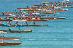 Hawaiian Canoe Paddling. Love the sport, nothing better than than the connection I feel to my ancestors when I'm giving my 110% in a race.