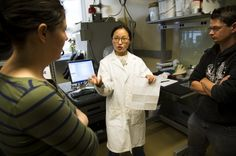Ford, University of Michigan open new lab to speed development of electric car batteries