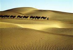 Silk road, Taklamakan Desert