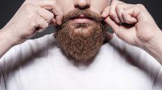 Studie odhalila, že vousatí muži jsou oproti oholeným ve značné výhodě. Ve vousech prý mají přirozené antibiotikum, které je chrání proti zlatému stafylokoku.…