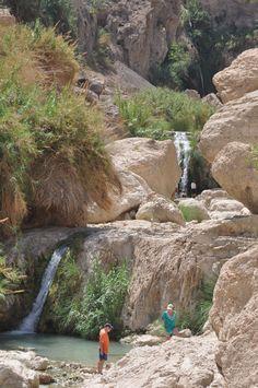 Ein Gedi Reserve: ISRAEL