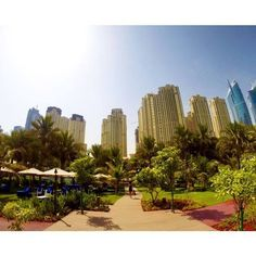 صباح الخير من دبي = Good morning from Dubai