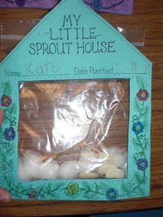 Plant Unit : Little Sprout House