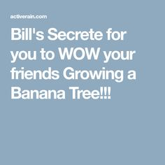 Bill's Secrete for you to WOW your friends Growing a Banana Tree!!!