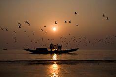 Dublar Char, Sundarban