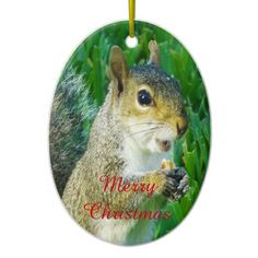 """Squirrel Christmas Ornament are great Gifts for Squirrel Lovers. Chippy the squirrel is saying """"Merry Christmas"""" as she is handing you her very special present, her very own Walnut."""