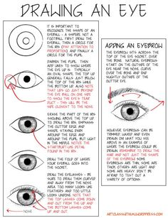 How to Draw an Eye with PDF