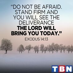 """Exodus 14:13 (NAS) But Moses said to the people, """"Do not fear! Stand by and see the salvation of the Lord which He will accomplish for you today; for the Egyptians whom you have seen today, you will never see them again forever https://www.facebook.com/TBN/photos/1219559828080544"""