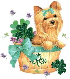 Yorkie Dog Christmas Animated GIF | Free St Patricks Day MySpace Glitter Graphics Page 2