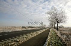 Winter scenery with a road Dithmarschen district Schleswig-Holstein Germany Europe