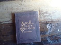 Antique Book, Animate Creation, Our Living World 1898 Illustrated Vol VI by SaffronColoredPony on Etsy