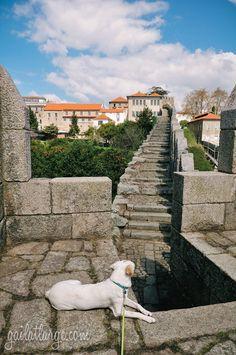 Porto from Muralha Fernandina