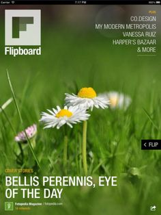 Flipboard is personalized magazine app. I read my facebook and twitter feed in my Flipboard app.  itunes.apple.com