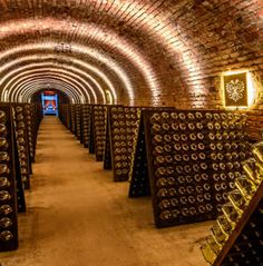 Schlumberger−Kellerwelten Visiting the sekt cellars