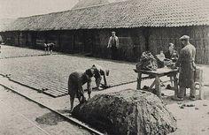 historie steenfabriek spouwen, ca.1925, www.vandersanden.be Picture Credit, Holland, Dutch, Brick, Painting, Historia, Nostalgia, The Nederlands, Dutch Language