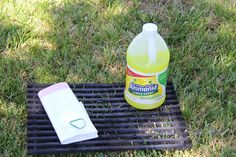 Cleaning Grill grates: soak grills in ammonia and tie the bag overnight, rinse and your grill is clean!
