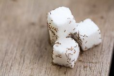why ants are attracted to sugar: sugar is a fast source of energy. It has an odor that attracts ants, and once the ants have found a source of sugar Mata Mosquito, Sugar Ants, Mosquitos, Eat Fruit, Cleaning Hacks, Sweet Recipes, Sweets, Cheese, Food