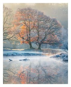 The River Brathay in Cumbria just after Sunrise Tony Higginson Landscape Photography