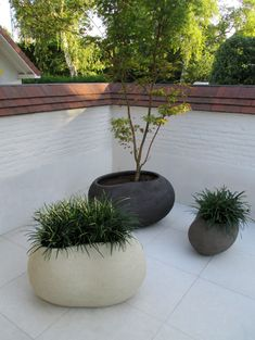 Contemporary pots. Pinned to Garden Design - Pots & Planters by Darin Bradbury.