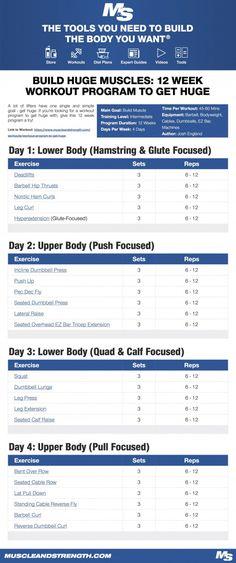 Build Huge Muscles: 12 Week Workout Program to Get Huge Gym workout program - Fitness Wöchentliches Training, Training Programs, Strength Training, Workout Programs, Gym Program, The Plan, How To Plan, Crossfit Workout Plan, No Equipment Workout