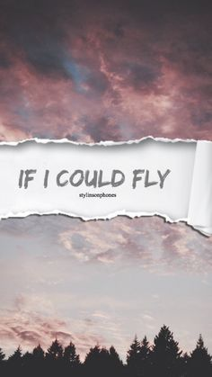 If I Could Fly | @stylinsonphones