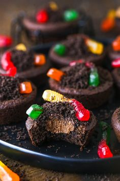 Chewy chocolate cookies, velvety chocolate buttercream, finely crushed Oreos and fruity gummy worms make these Dirt Cookie Cups a Halloween sensation! They're super easy to make and fun to decorate. Halloween Baking, Halloween Desserts, Halloween Cakes, Halloween Treats, Halloween Fun, Buttercream Filling, Chocolate Buttercream, Chewy Chocolate Cookies, Chocolate Flavors