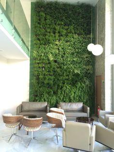 Jardim Vertical Mamute em clínica de Porto Alegre