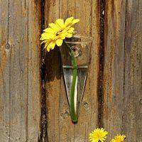 siyaglass Cono de cristal transparente para colgar, 2unidades), diseño de jarrón de soporte de pared (Air planrt Flower terrario para Home Garden Decor