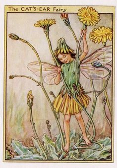 146 best images about Flower Fairies on Pinterest | De web, The fairy and Vintage fairies