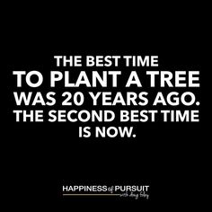 """The best time to plant a tree was 20 years ago. The second best time is now.  #motivation #entrepreneur #success . Don't wait to build your future. . Almost every entrepreneur I've interviewed on The Happiness of Pursuit Podcast has said the same thing when asked what advice they would give heir younger self - """"start sooner."""" . The longer you wait to chase your dreams the harder and less likely it will seem to attain them. . Take weight loss as an example. How many times have you said """"I'll…"""