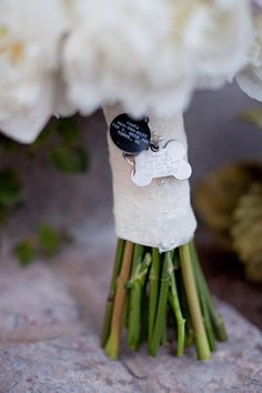 A sweet way to incorporate your 4-legged family member in your wedding ~ www.asweetpeaevent.com