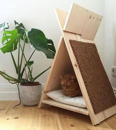 Cool idea for a cat bed with scratching post.