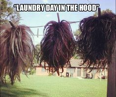 21 Hilarious Weave Memes That Will Make You Laugh - NoWayGirl Laundry Day in the HOOD, hair wigs WEAVES hanging outside to dry, washing shampoo hairs Funny As Hell, Haha Funny, Funny Memes, Jokes, Lol, Funny Stuff, Hilarious Sayings, Freaking Hilarious, Funny