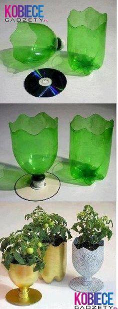 Fajny pomysł na DONICZKĘ z butelki i płyty! Kreatywność to podstawa!