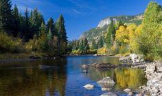Roosevelt National Forest Cache La Poudre River