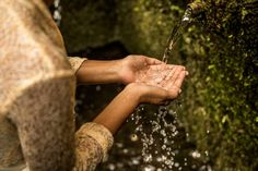 What is the best wellness retreat for your needs? Find more here our ask for advice from our healing experts. Water Purification, At The Hotel, Ubud, Hotels And Resorts, Bali, Spa, Healing, Spring, Journey
