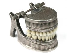 Vecabe Dental Model Jaw and Teeth - Phisick | Medical Antiques