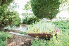 Wheelbarrow in the garden www.innattabbscreek.com