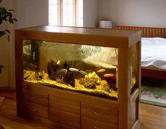 Sleeping area in a studio apartment, contemporary room dividers and storage ideas, large aquarium